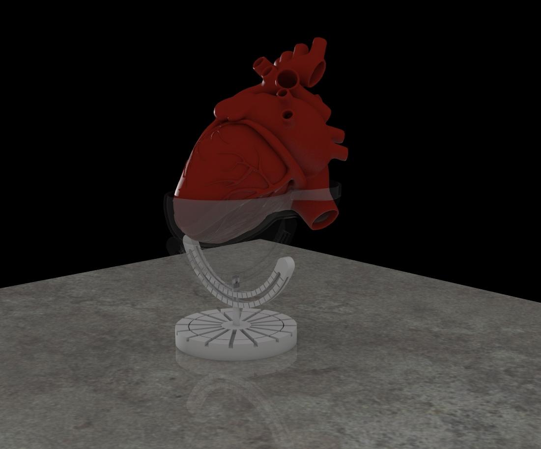 Calibrated Heart1.jpg