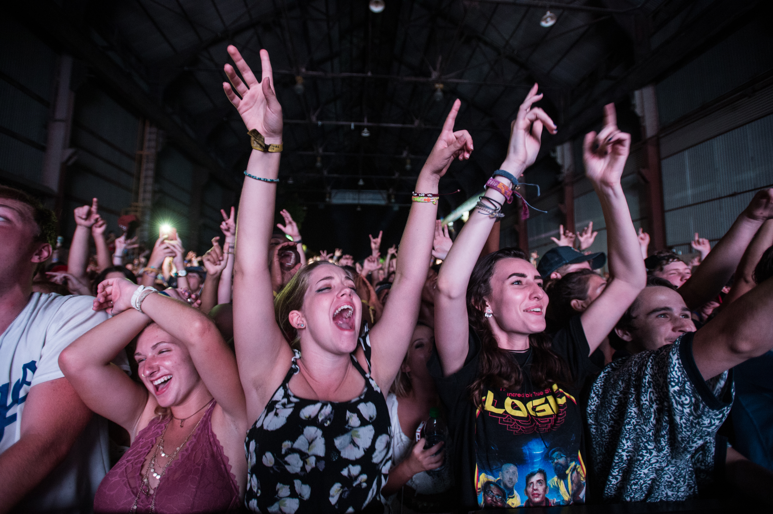Fans Enjoying the Moment