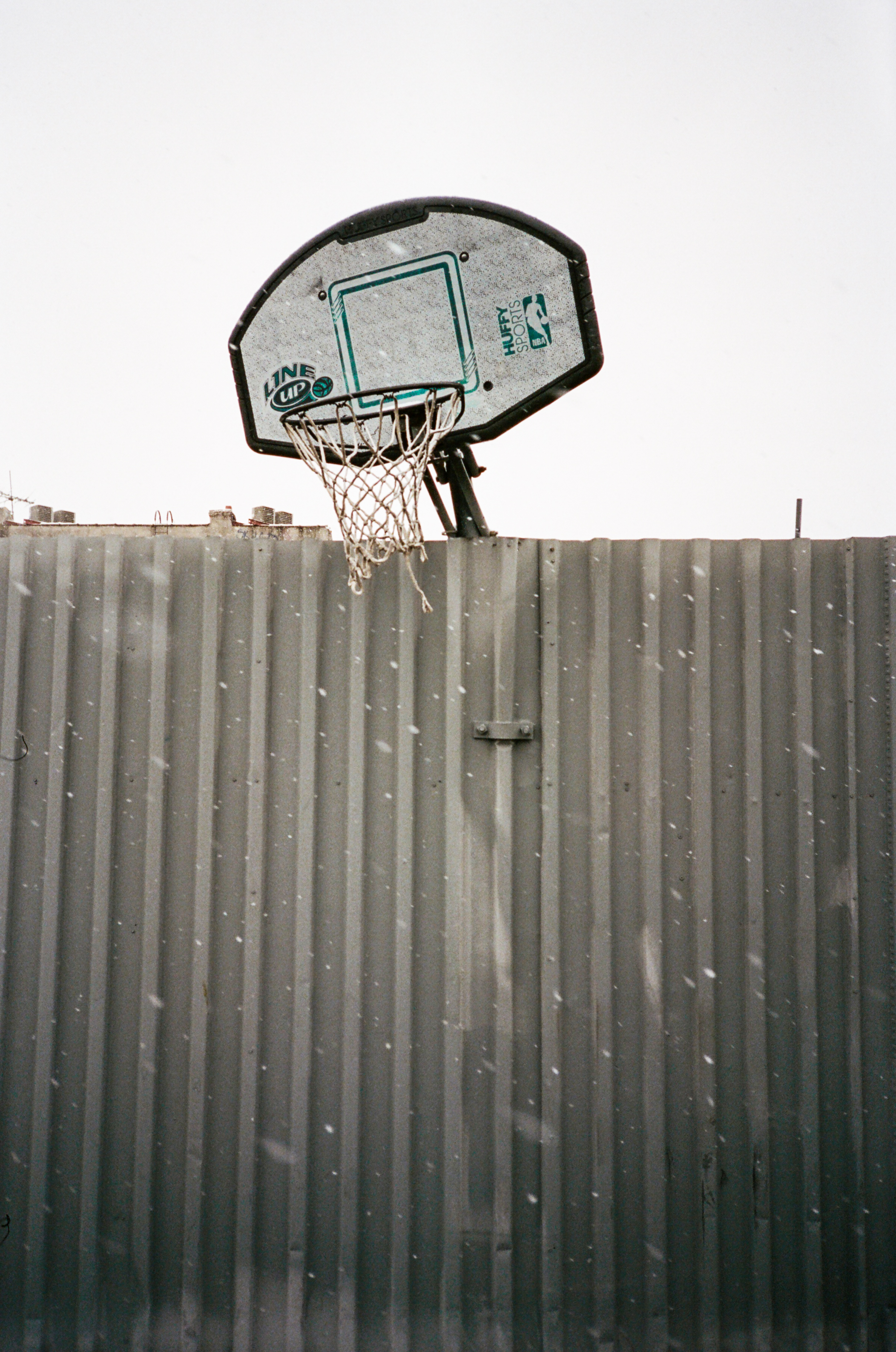 Hoops in NYC