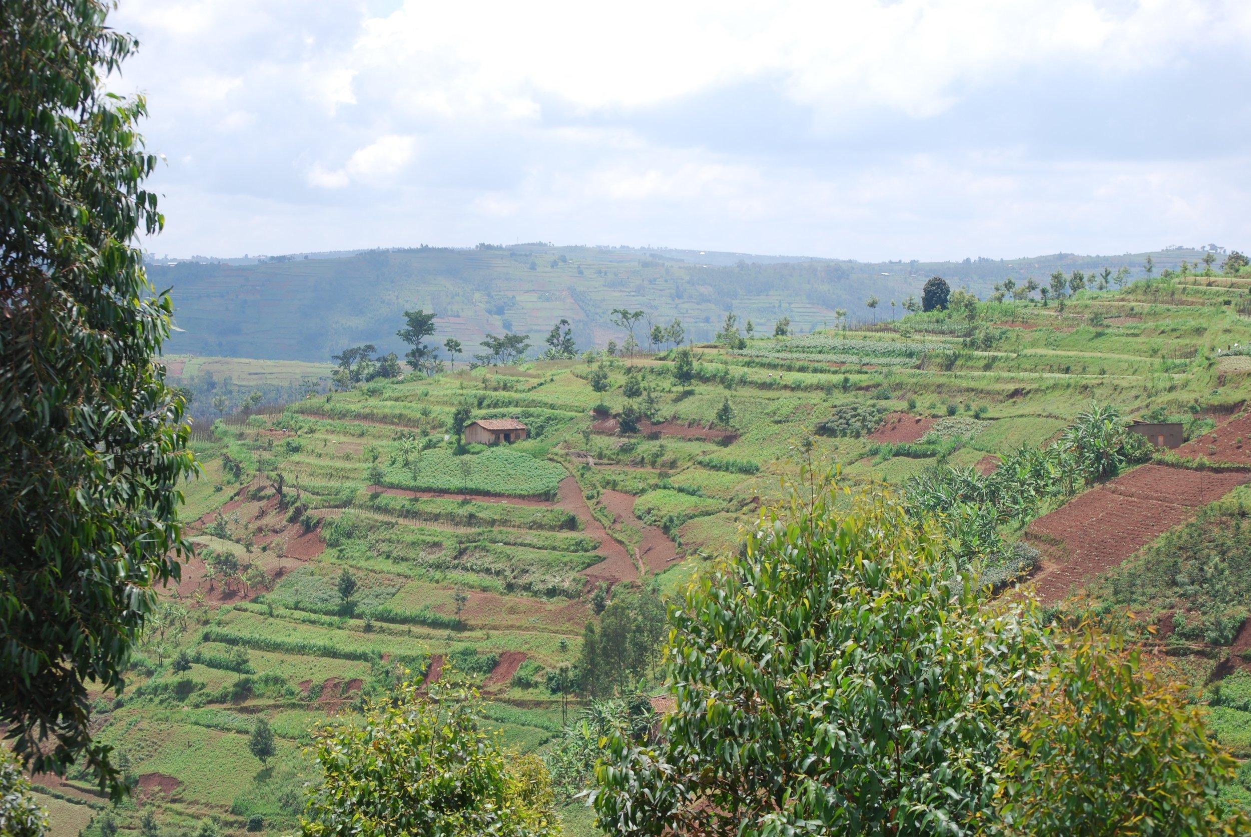 Hills near Mageragere.jpg