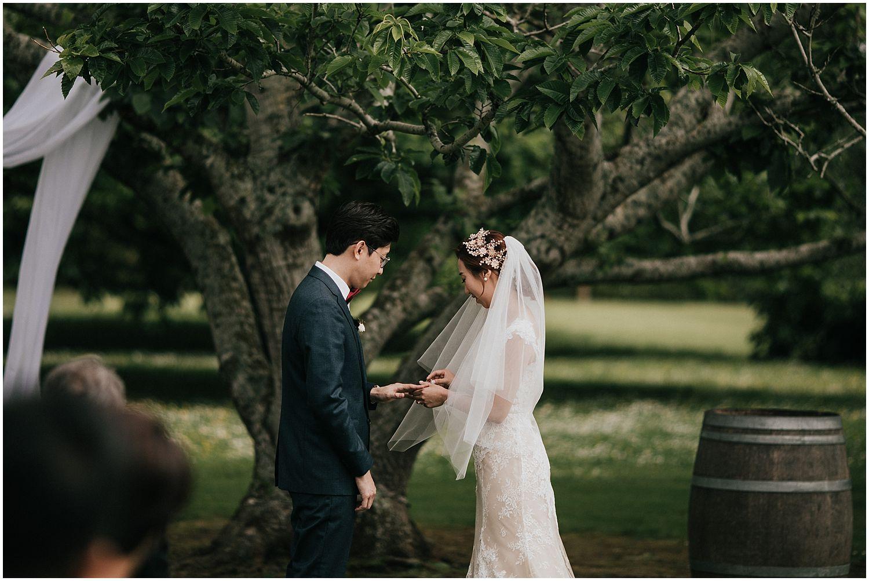 Markovina Estate wedding photos JJ_0036.jpg