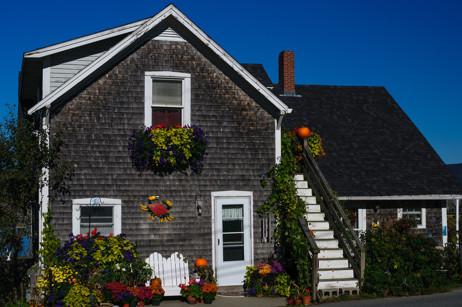 House in Bass Harbor