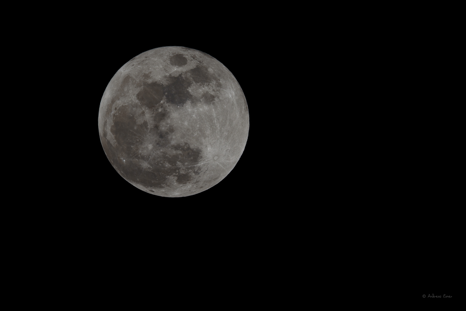 1/160 s, f/11, ISO 100, 850 mm (1275 mm DX mode)  -----------