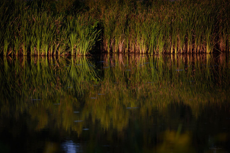 Heritage Pond, Dubuque, Iowa