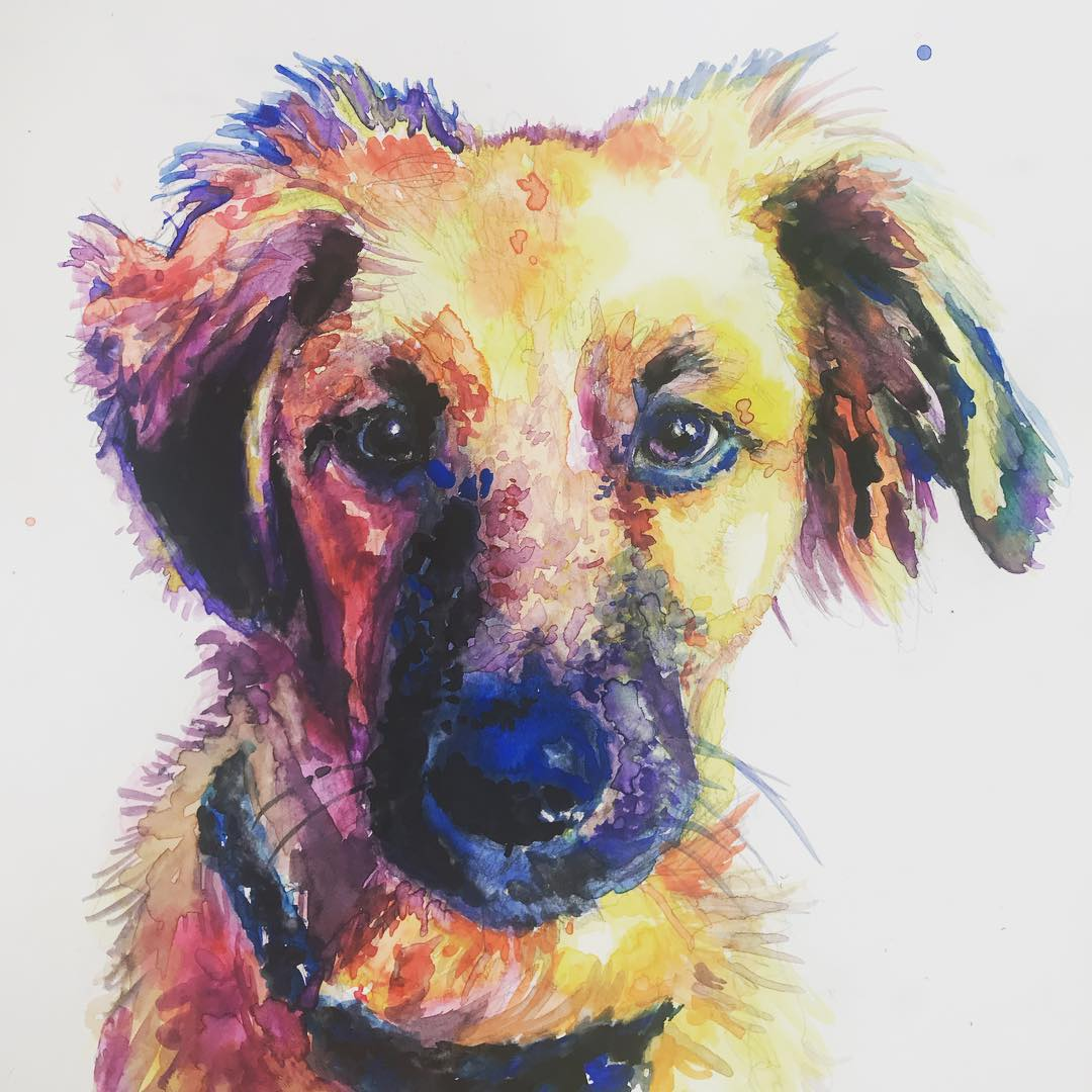watercolor dog fuzzy.jpg