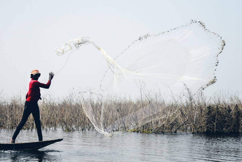 Casting a net for some fish