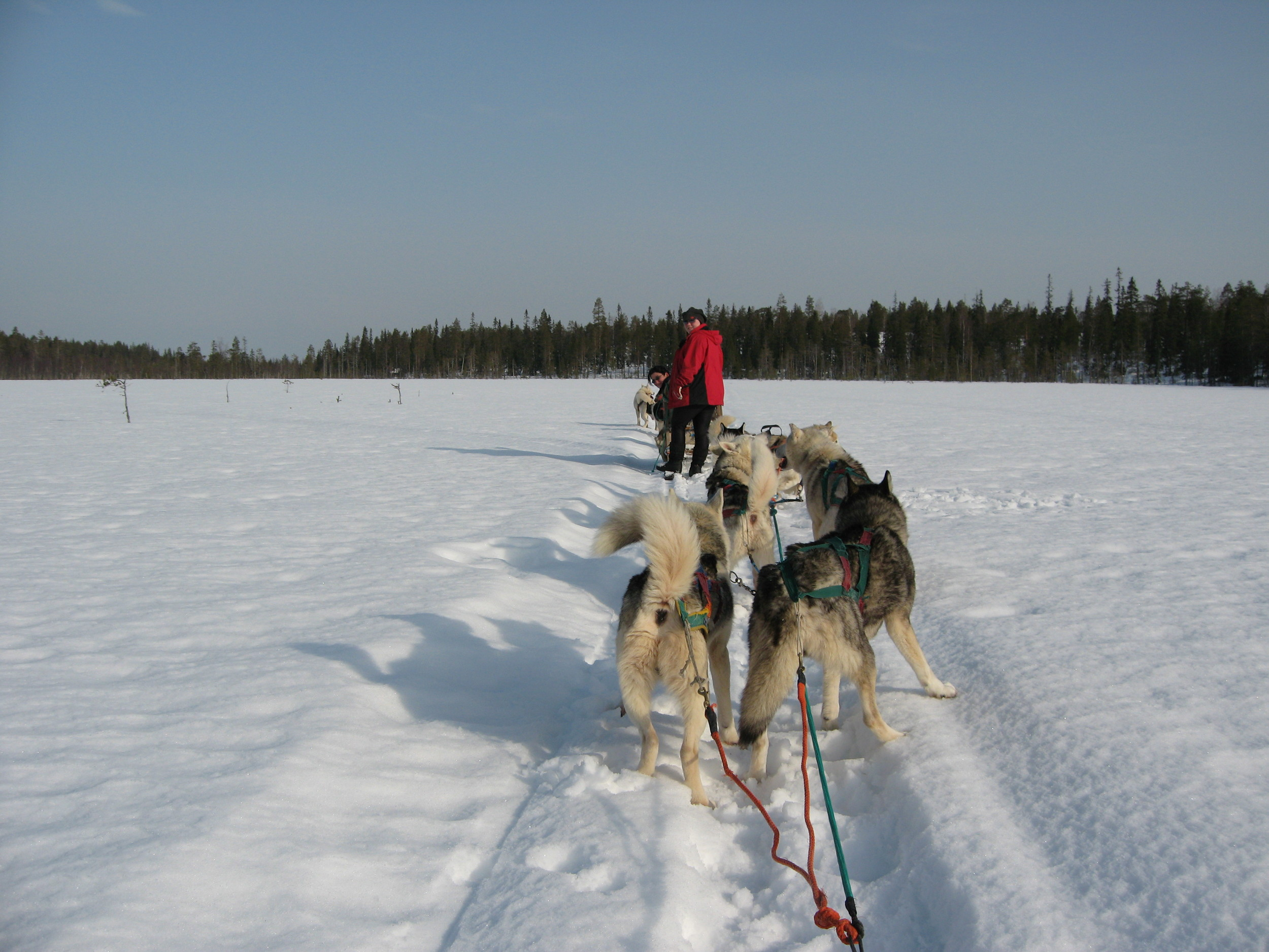 finland 080.jpg