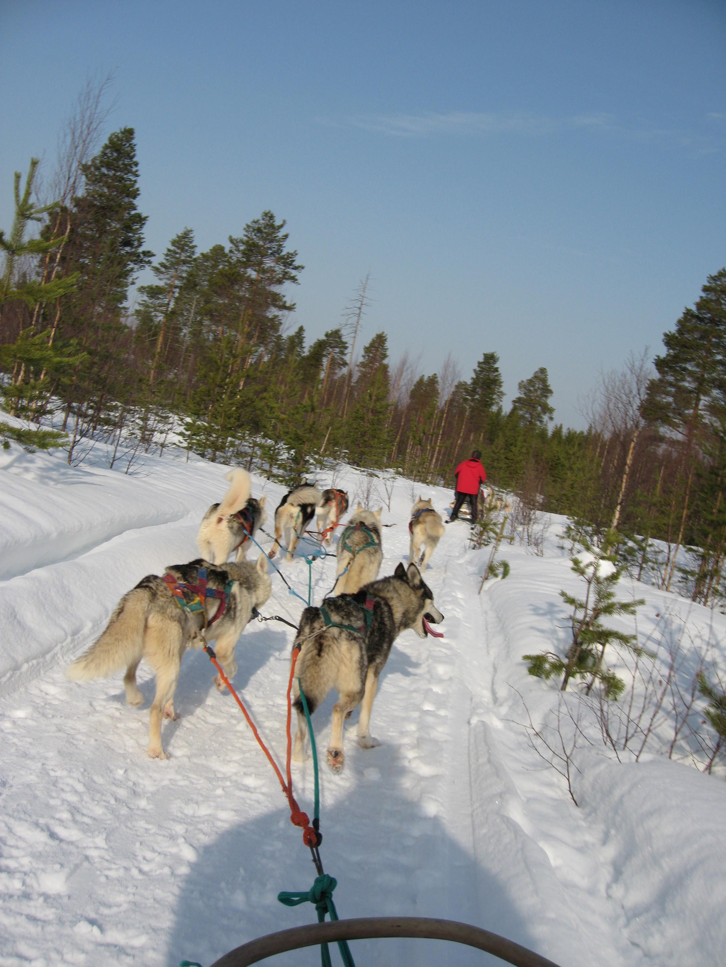 finland 083.jpg