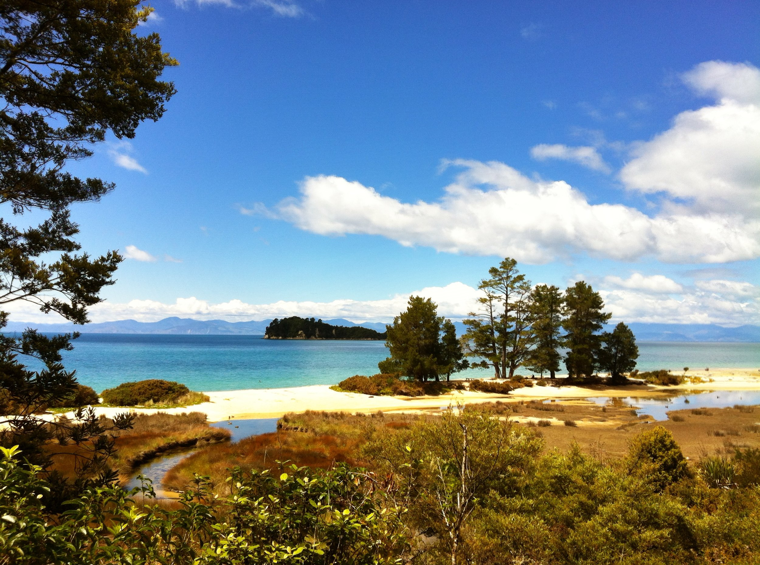 Abel_Tasman_trail,_National_Park,_South_Island,_New_Zealand_-_panoramio_(9).jpg