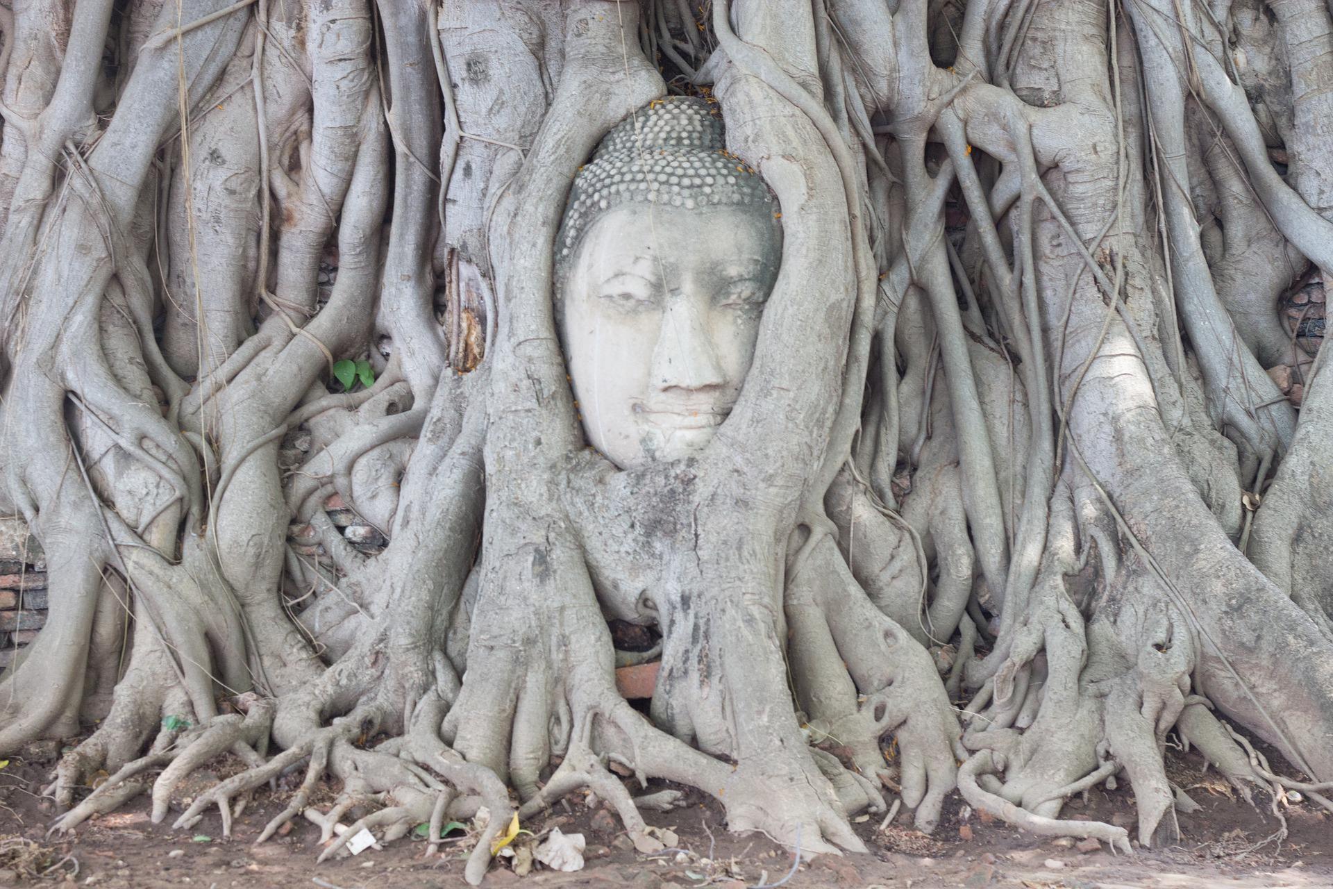 ayutthaya-2324459_1920.jpg