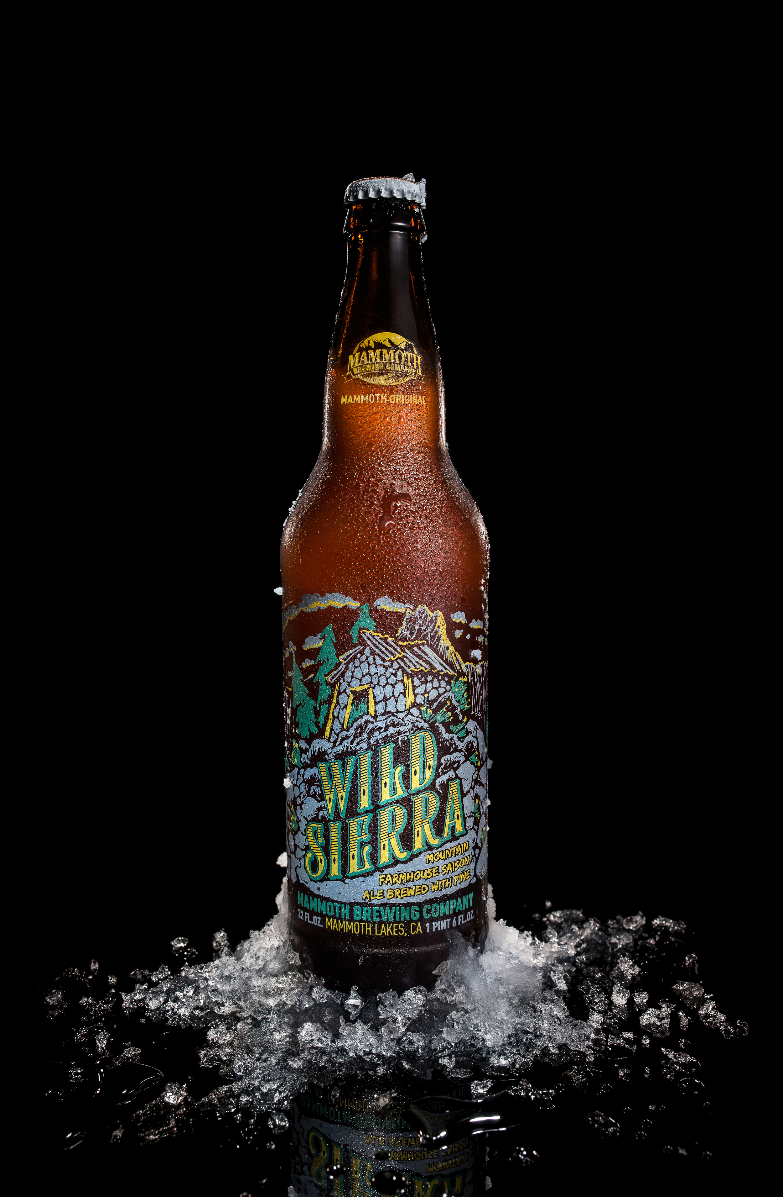 Mammoth-Brewery-Wild-Sierra-Final.jpg