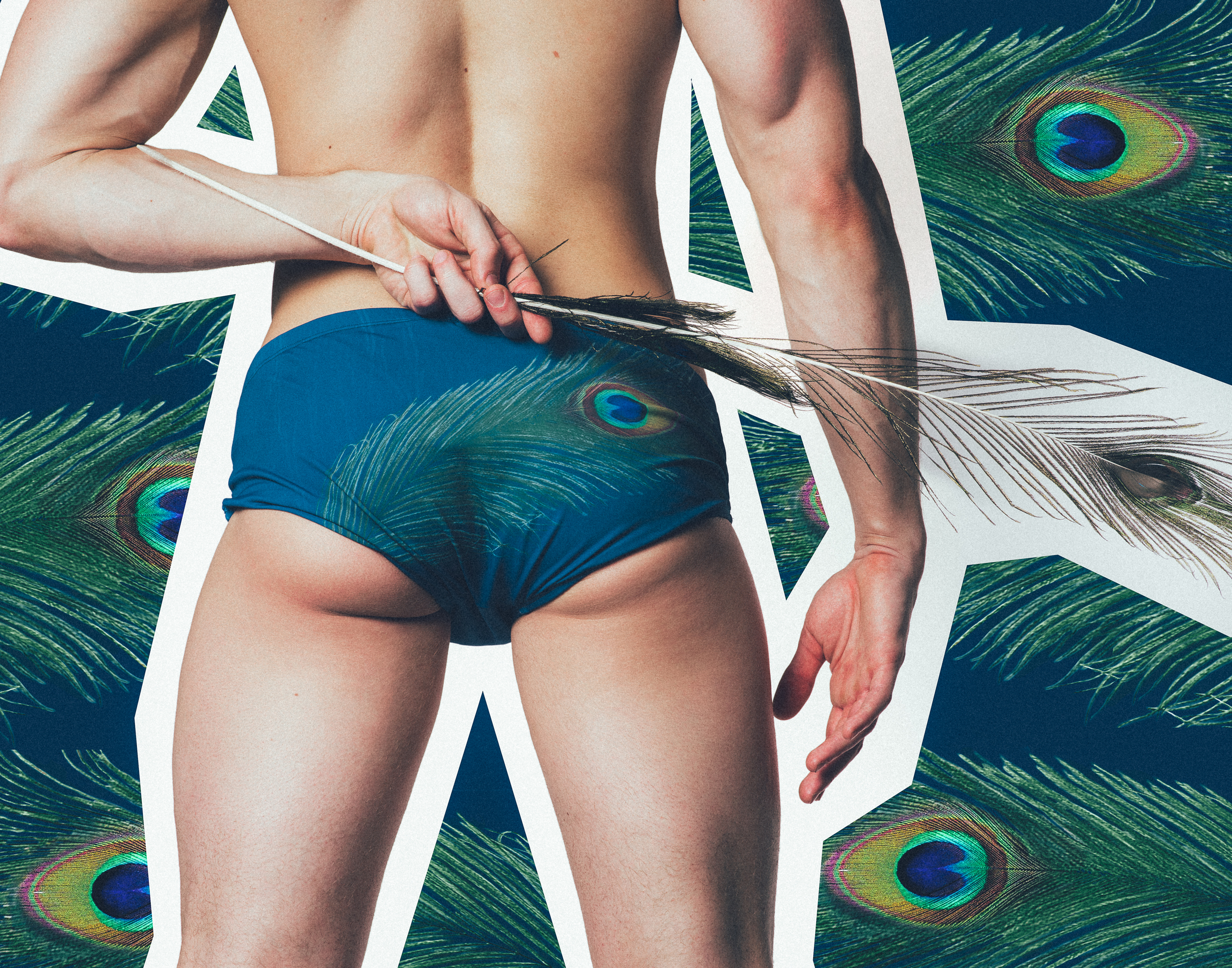 Butt shot peacock feather.jpg
