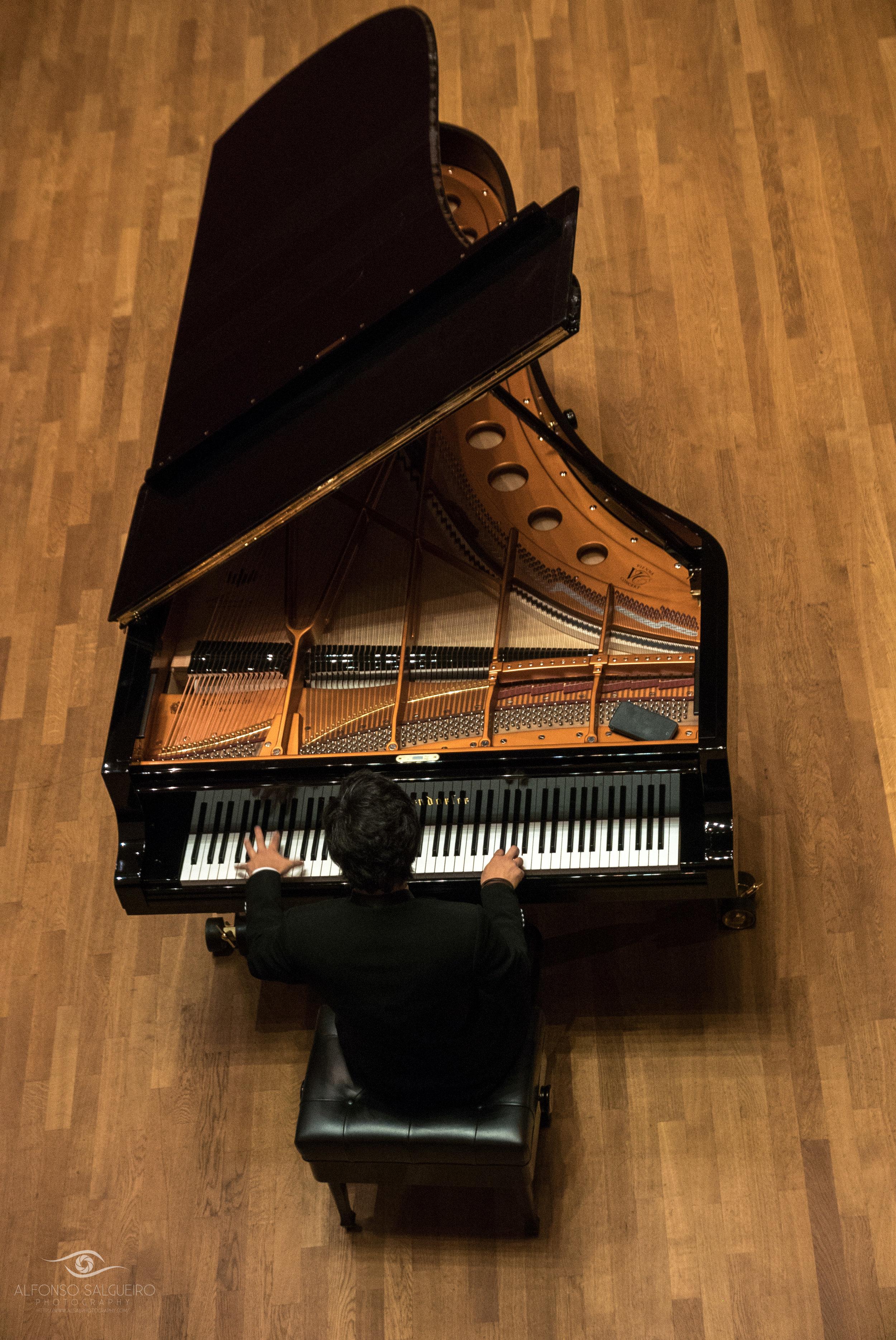 Philharmonie concerts-5.jpg