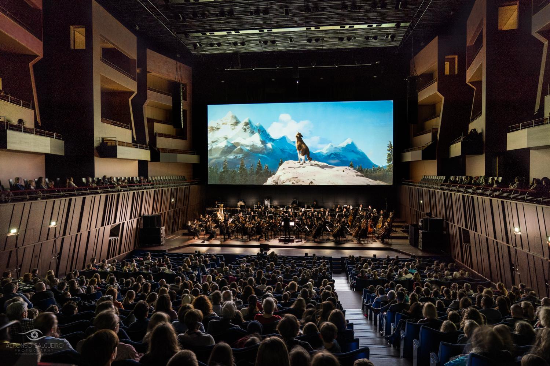 Philharmonie 2017-18 season in images-28.jpg