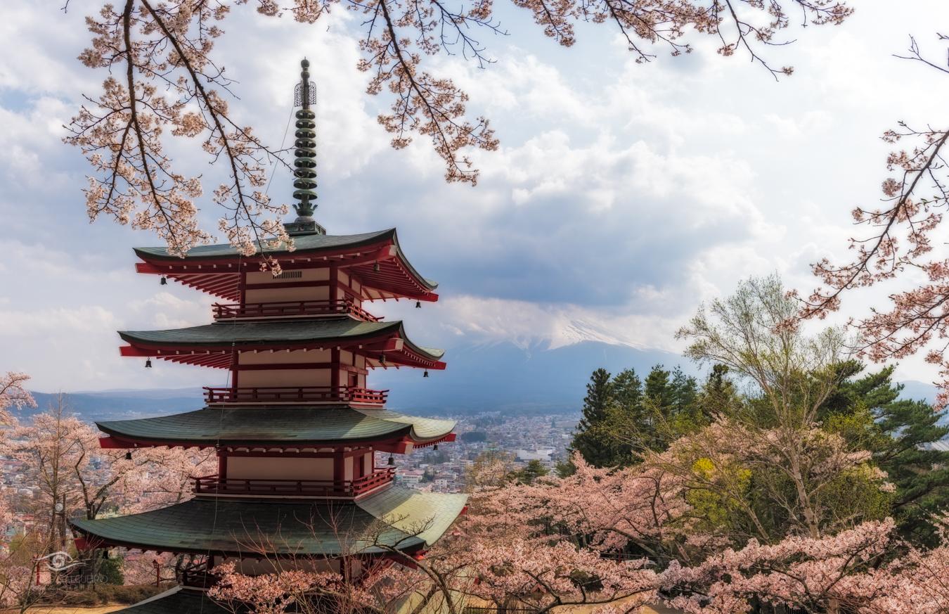 Japan - Easter 2019-20.jpg
