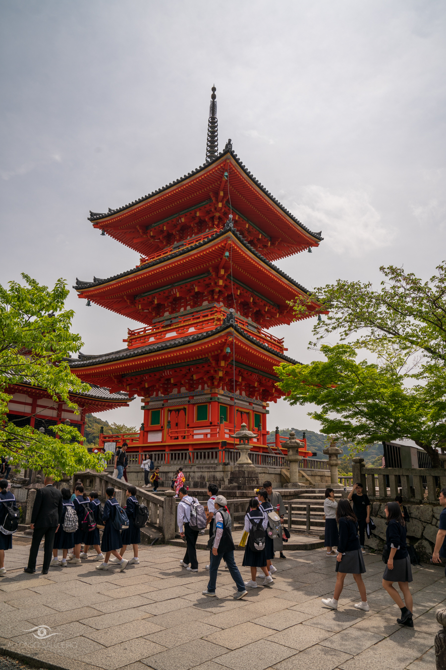 Japan - Easter 2019-44.jpg