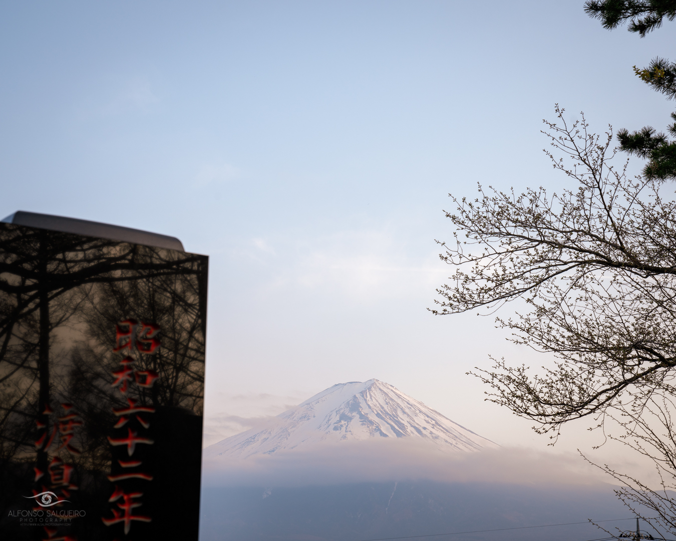 Mt. Fuji seen from a Japanese graveyard late in the evening