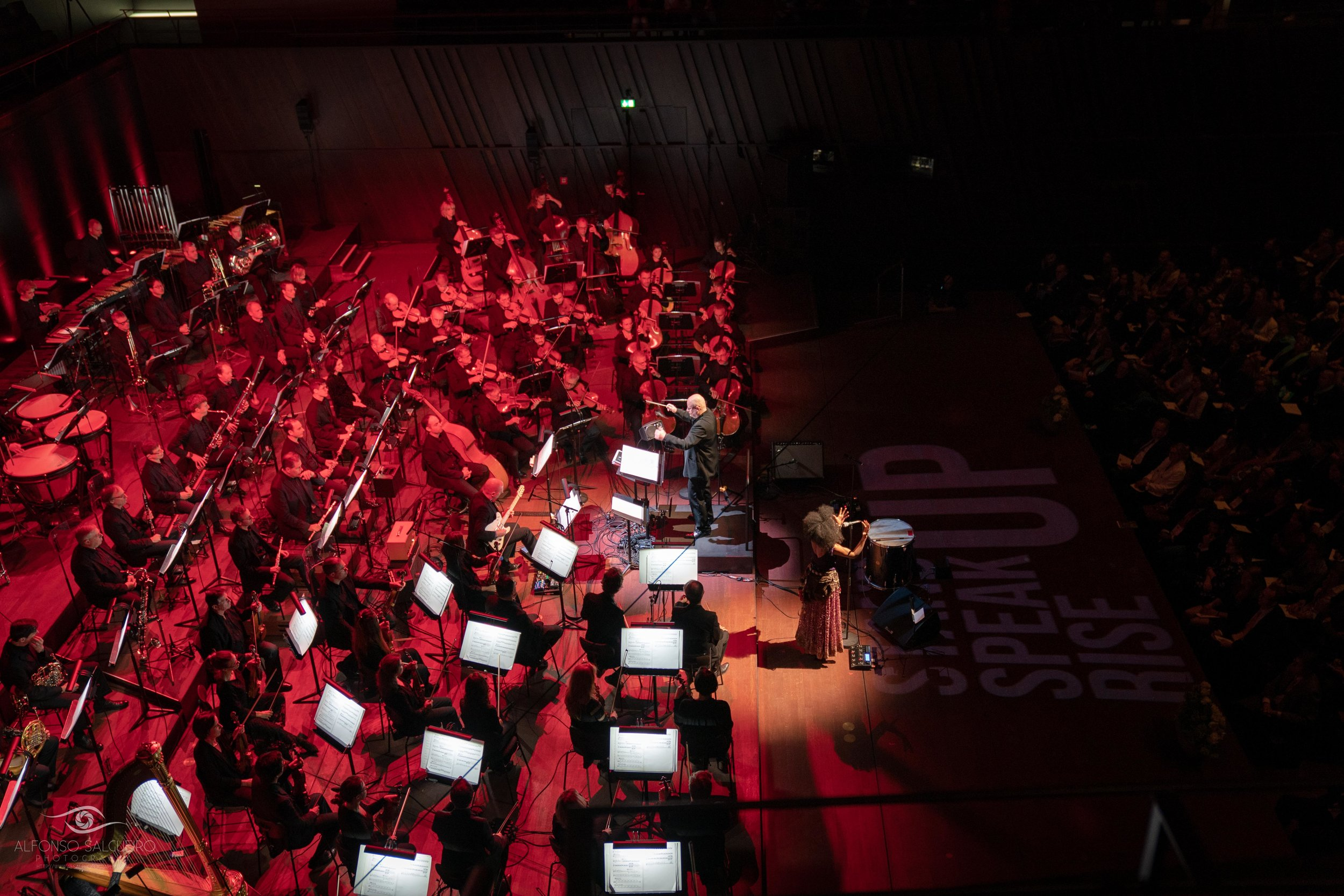 Philharmonie 18-19 season in images_-17.jpg