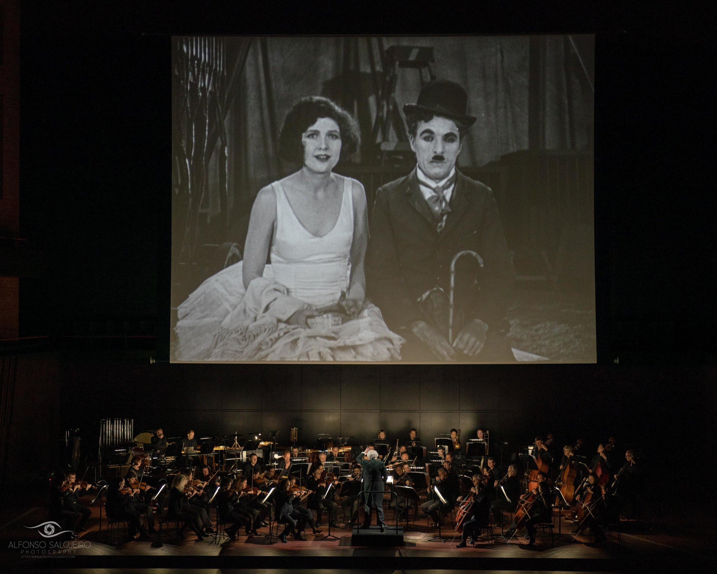 Philharmonie 18-19 season in images_-23.jpg