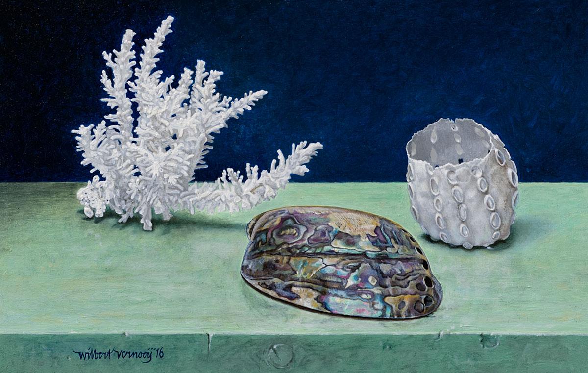 Koraal, schelp en koraalvorm | Coral, shell and coral shape