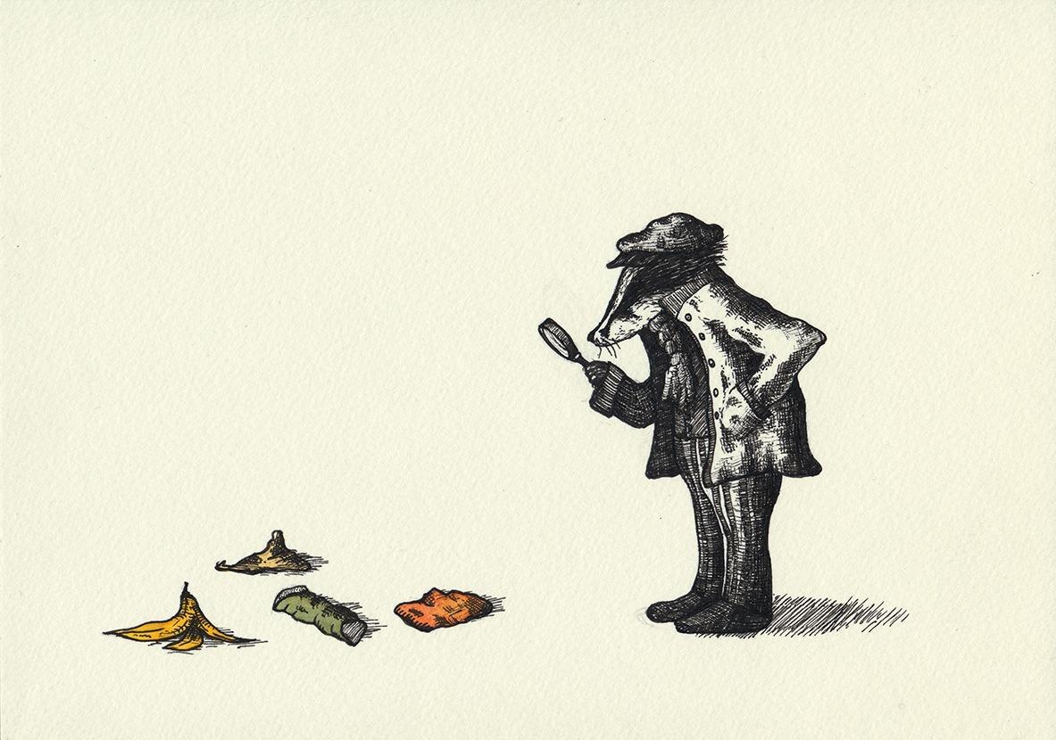 badgerdetective.jpg