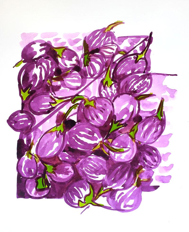 Aubergine indiennes.Format 30x50cm. Encres. (copyright ADAGP)