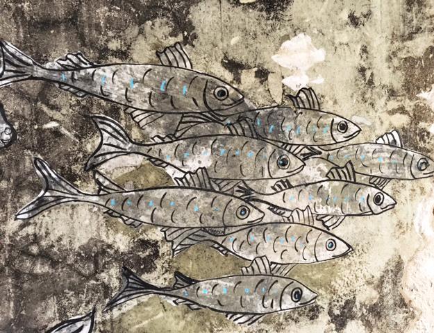 Les poissons au Fil du Doubs