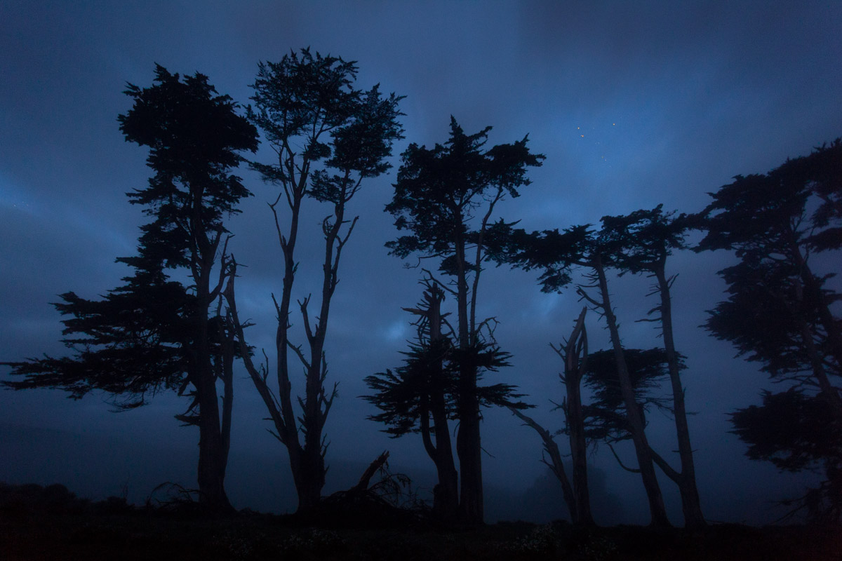 Photographs taken along the Northern California Coast