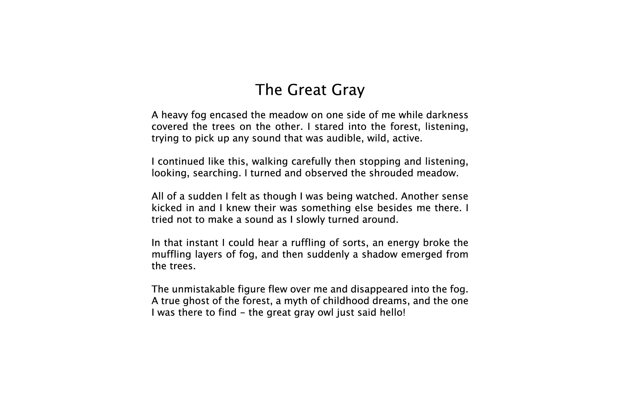 TheGreatGrayFlat.jpg