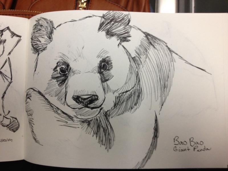 Bao Bao Portrait.