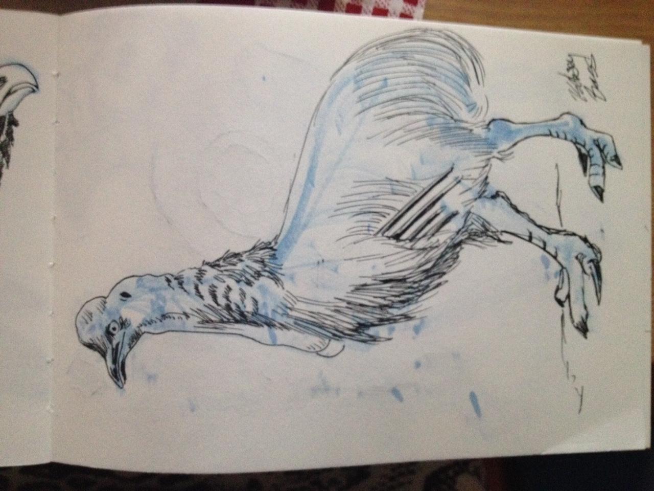 dino bird.JPG