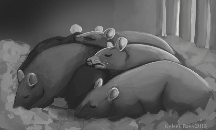 Rat-nap.png