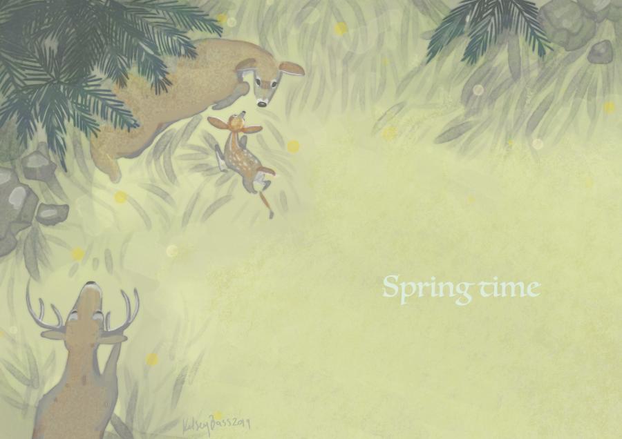 deers in spring.jpg