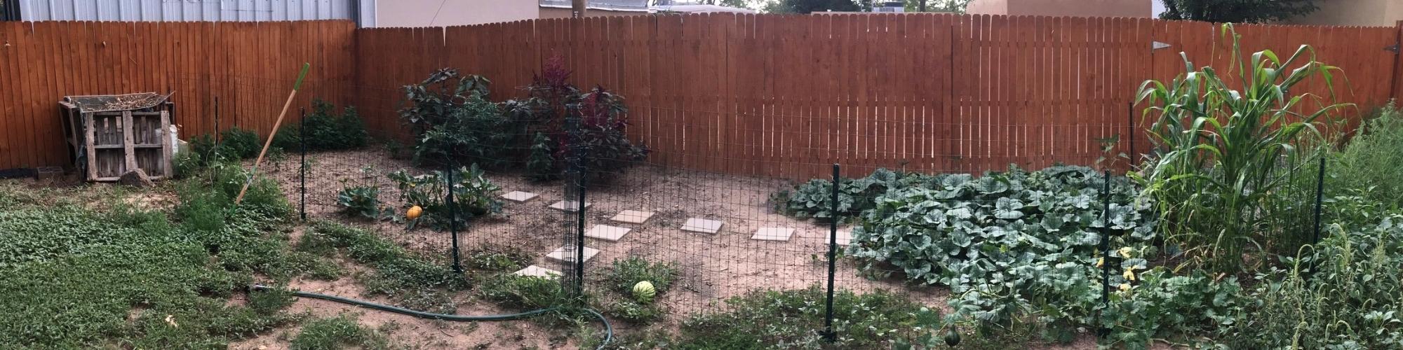Garden growth (1).jpeg