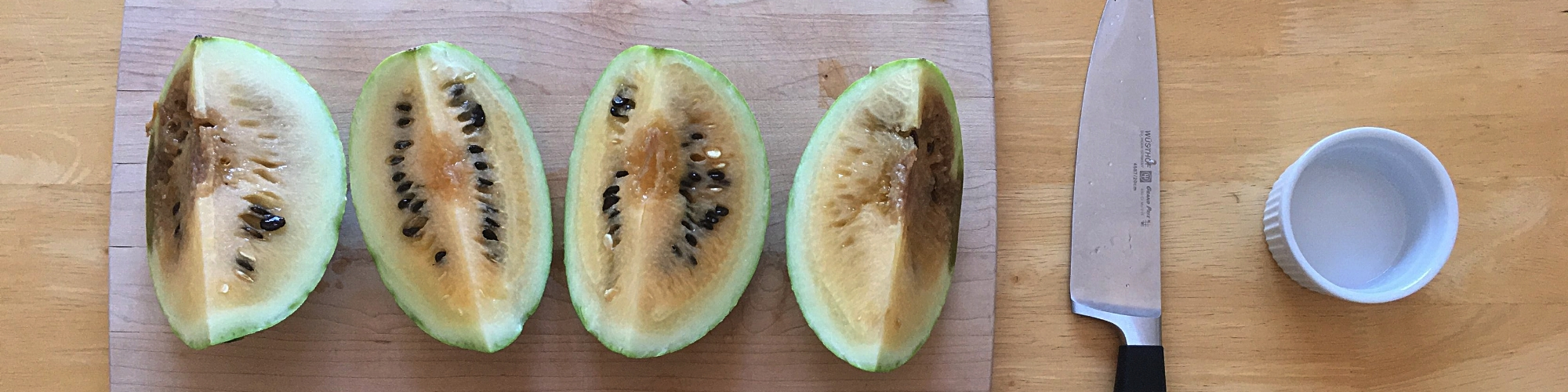 Melon dissection (1).JPG