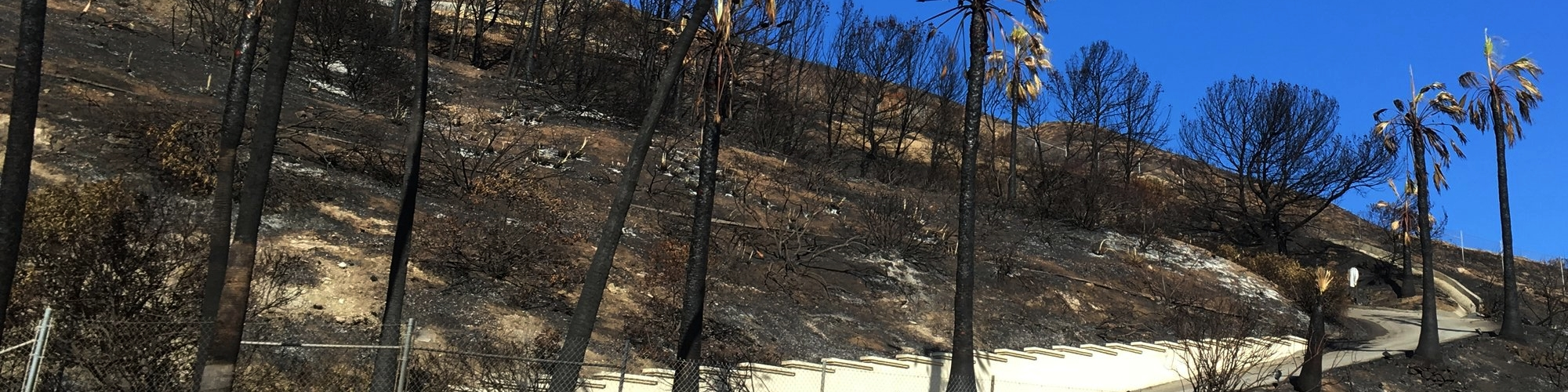 California wildfire (1).JPG