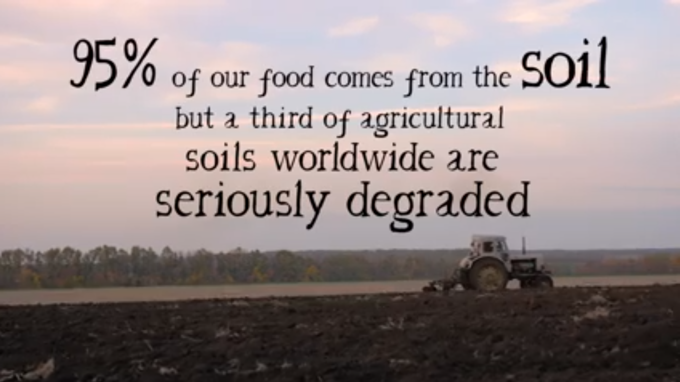 World Soil Day.png