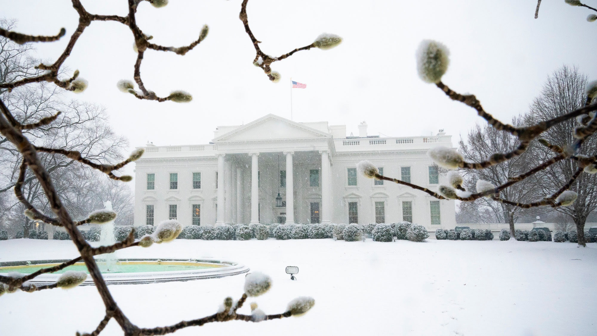 2019-02-20 - White House photo.jpg