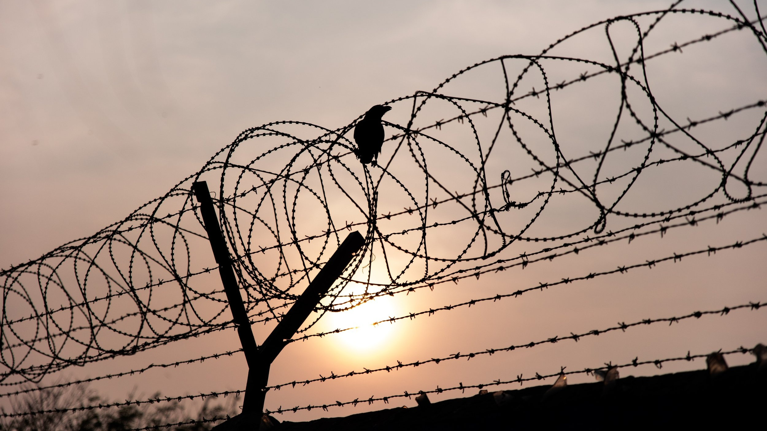 Barbed Wire Patrick Hendry Unsplash.jpg
