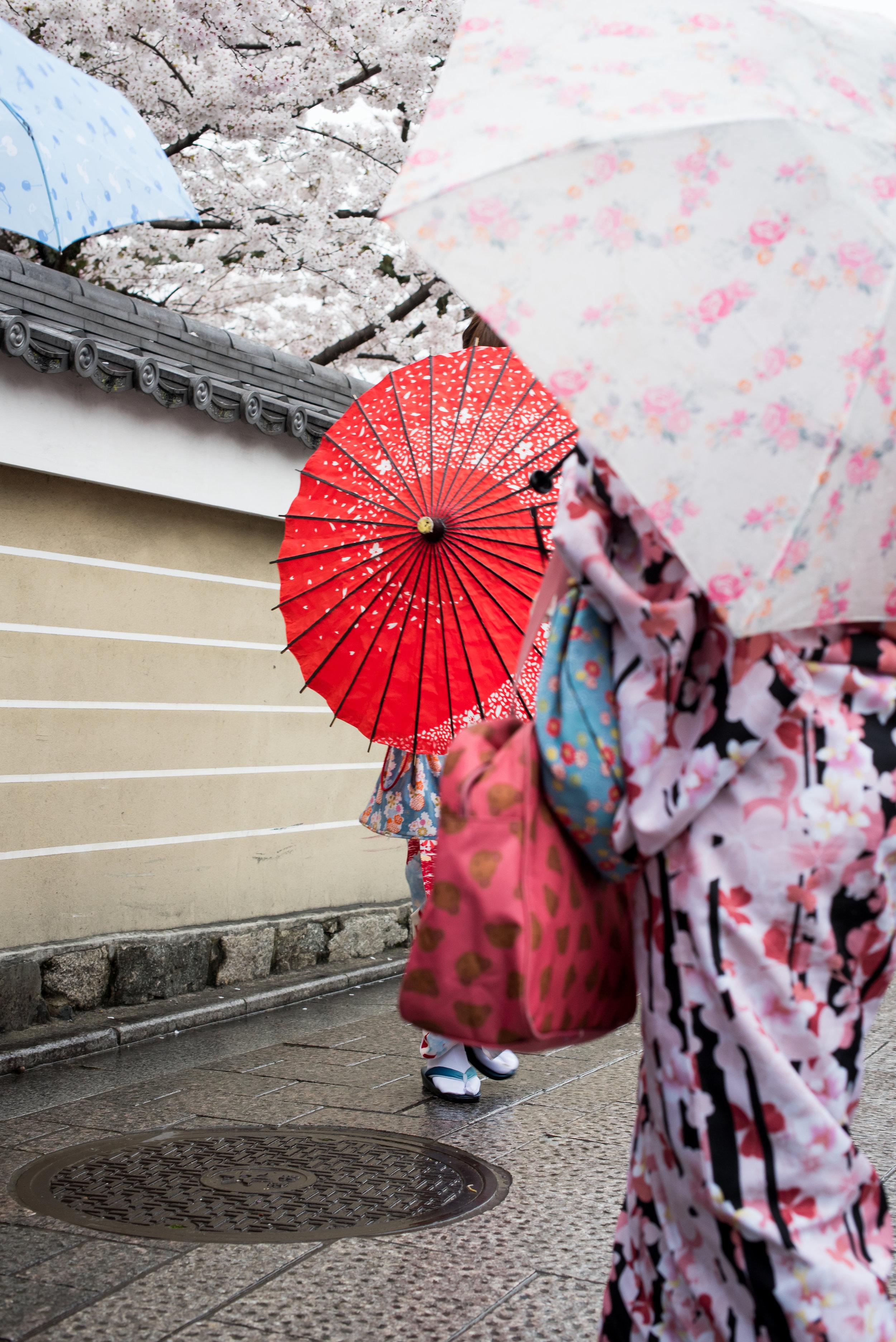 Japan_2017-1096.jpg