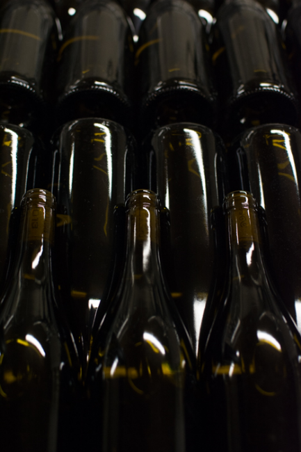 Some (filled) wine bottles ready for labels