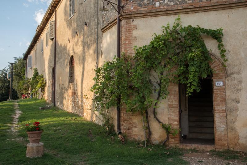 Pulcinelli house,where I'm living
