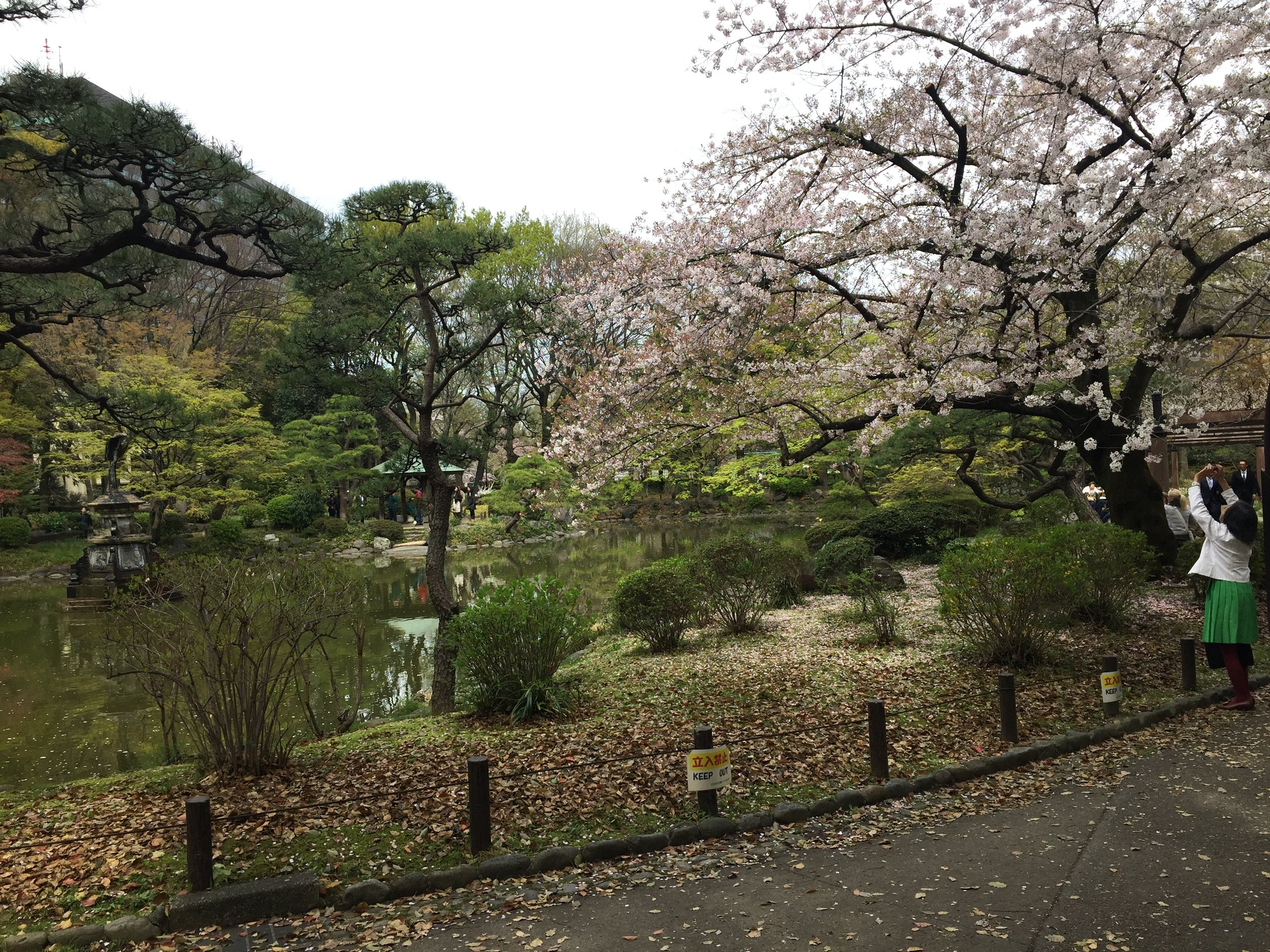 waiting for our room, we have a soba lunch, and then pop into a park to remind us where we are