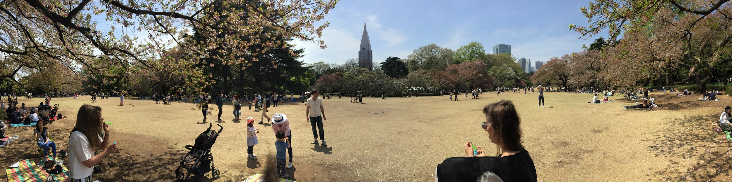 sunday park time with more local expats