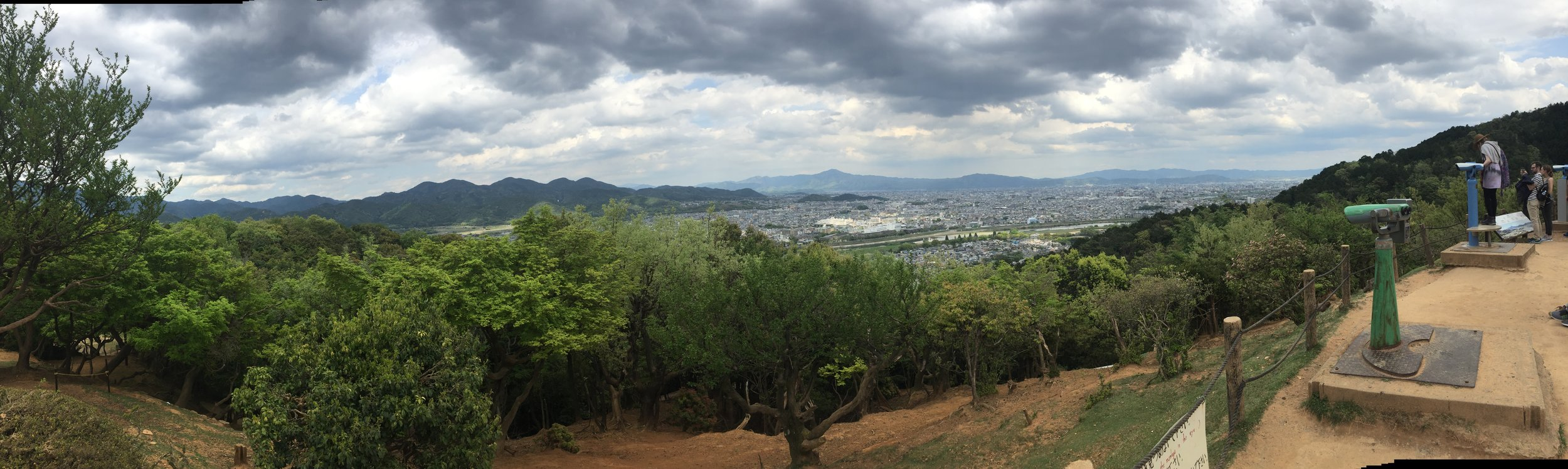 monkey's eye view of kyoto