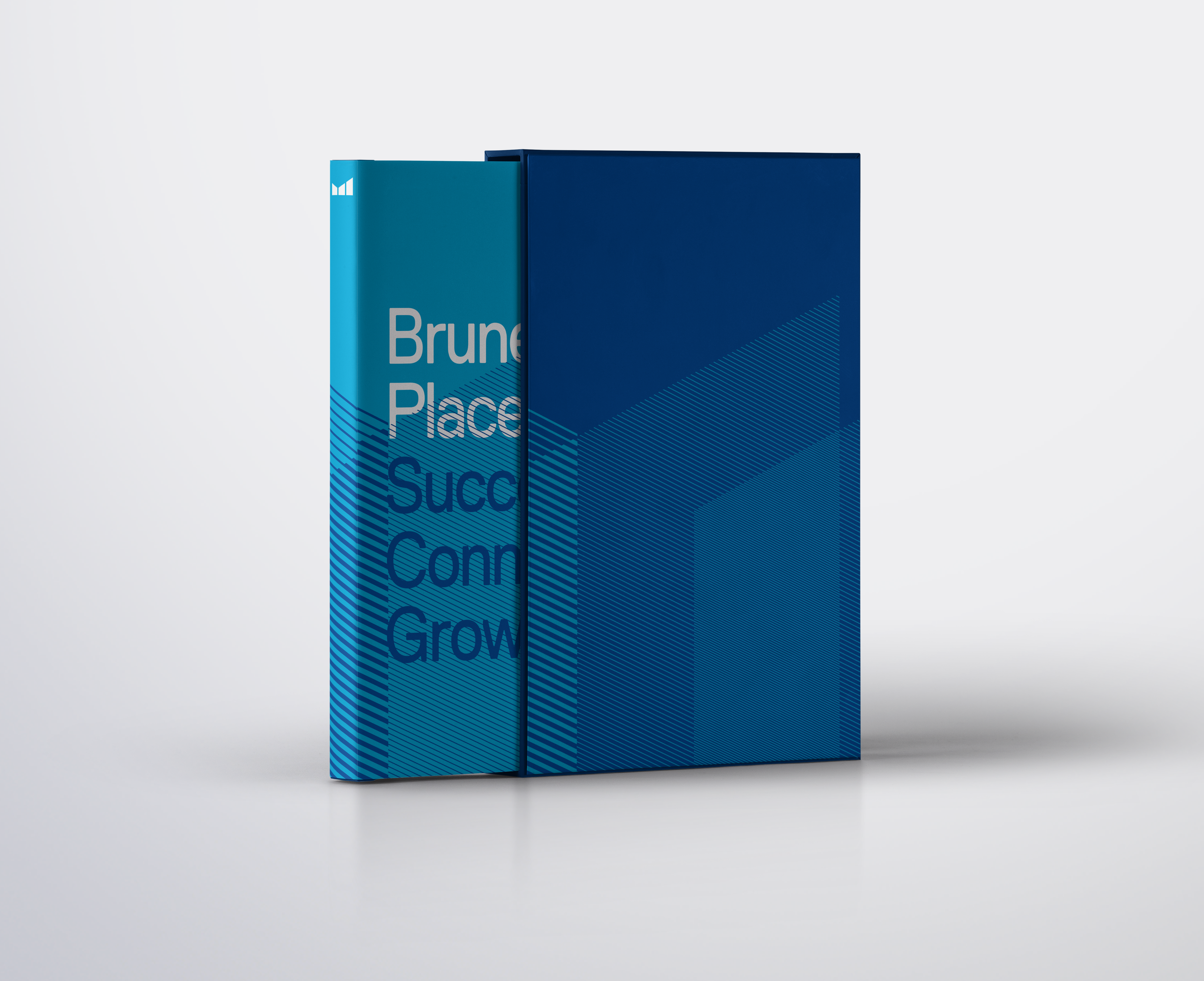 Brunel_Place_identity15.png