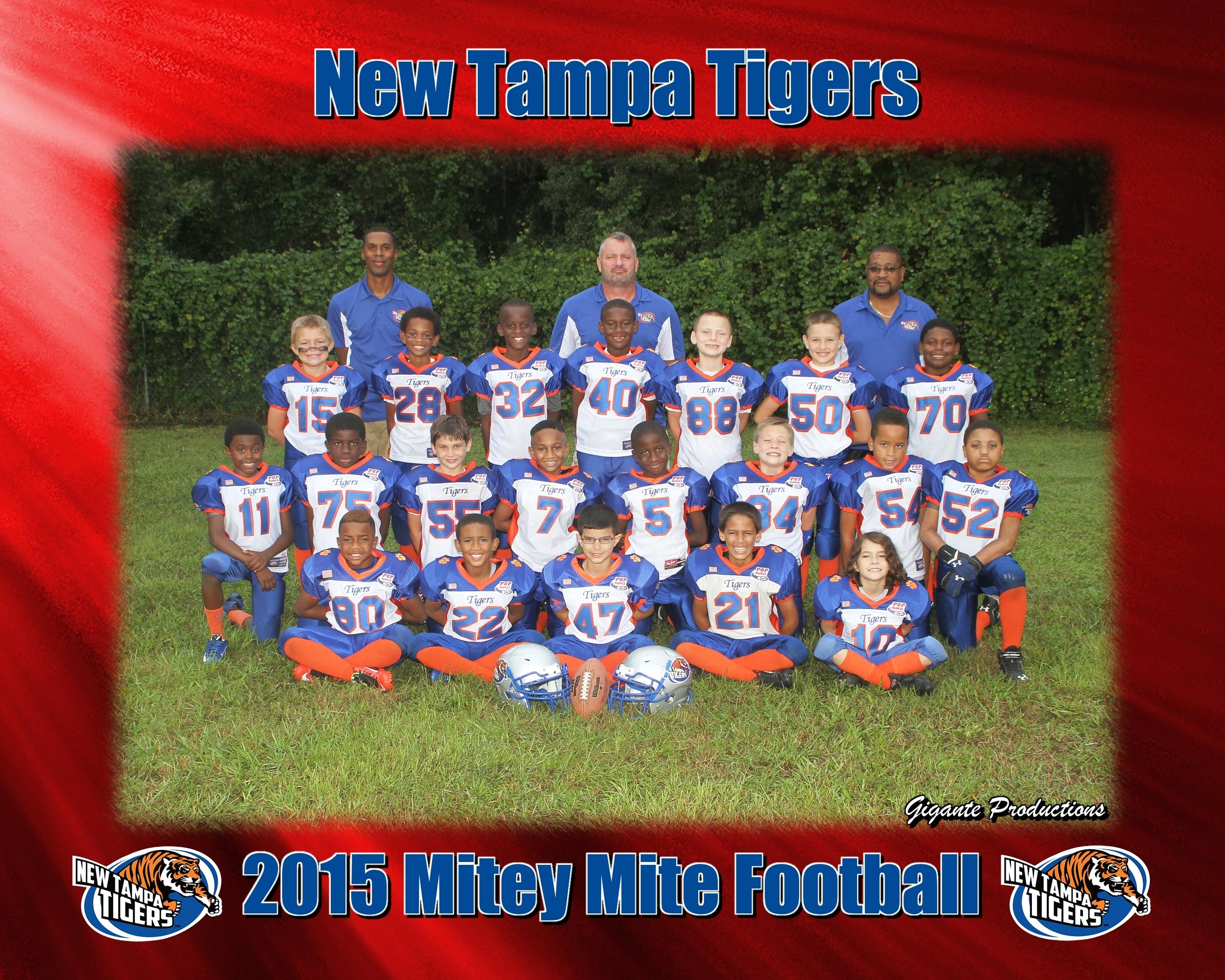 New Tampa Tigers FB.jpg