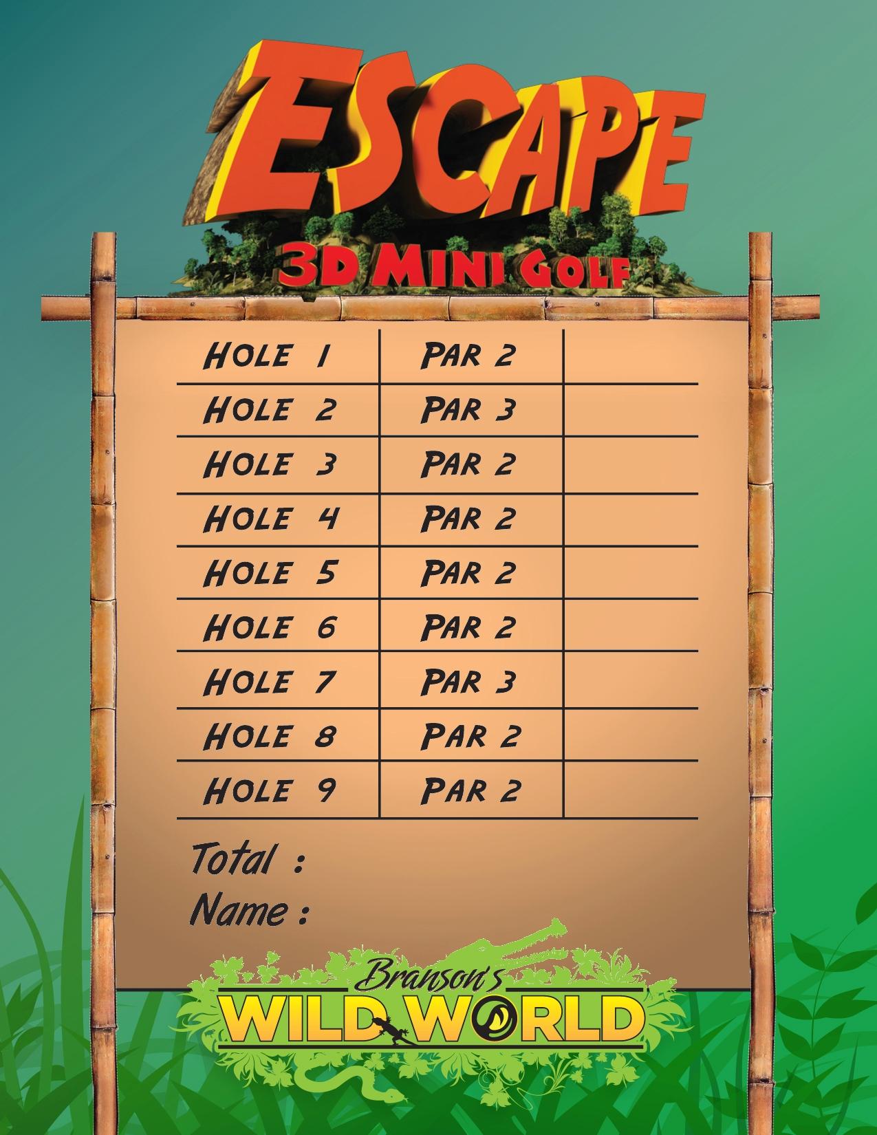 score cards version 1 sINGLE website.jpg