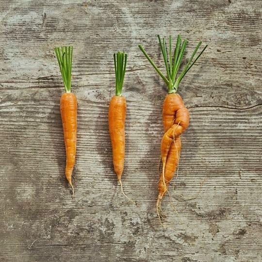 Coop engagiert sich gegen Foodwaste mit Ünique. Unter dieser Marke gelangen ansonsten unverkäufliche Gemüse in den Handel.