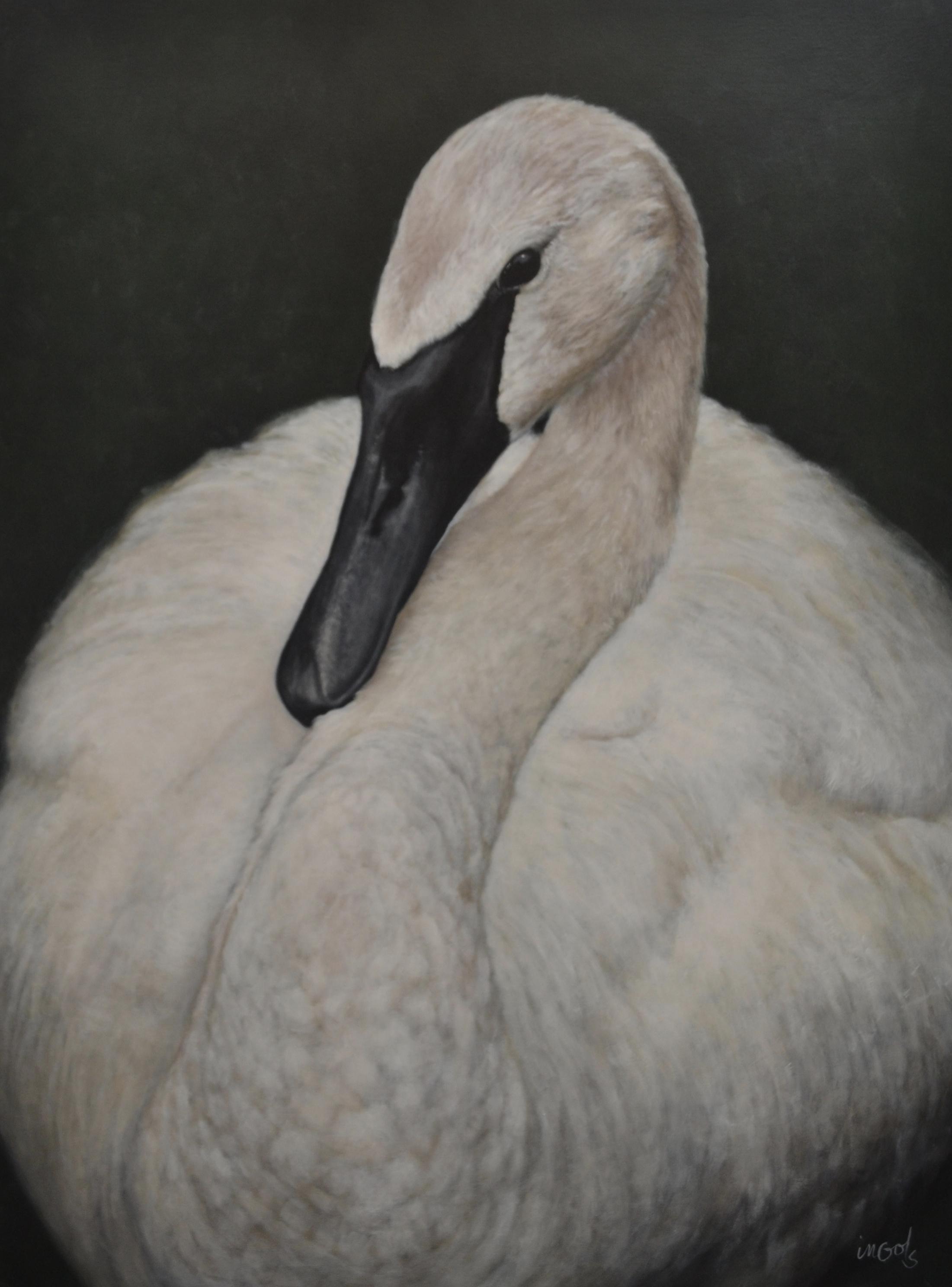 Jane Ingols Art, 36x48